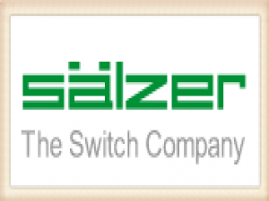 Salzer Electric Group